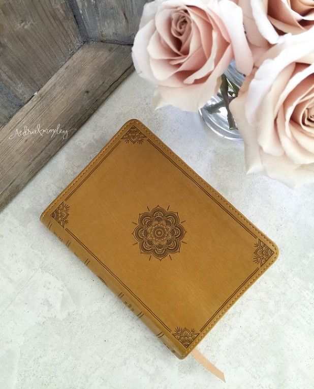 ESV Goldenrod Compact Bible Aedriel Moxley
